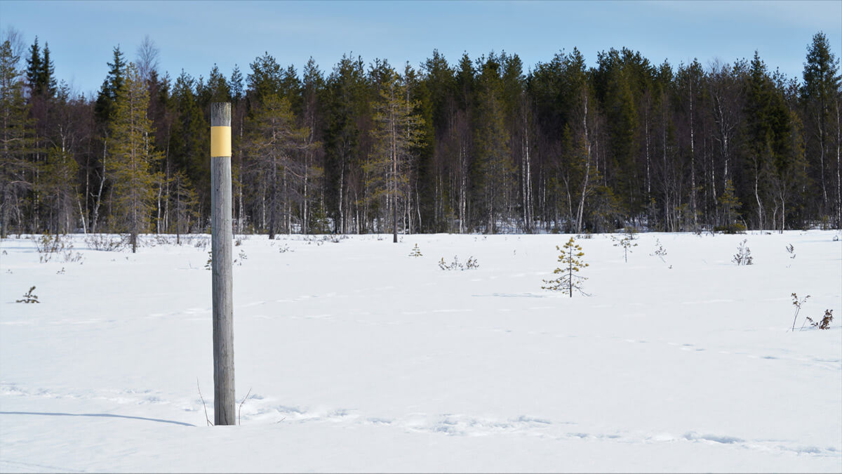Rajavyöhykkeen yli ei ilman lupaa ole kuvaajalla asiaa, karhuja rajat eivät kuitenkaan pysäytä.